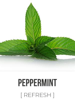 Aura Peppermint 4oz